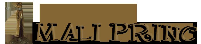 Mali princ Logo
